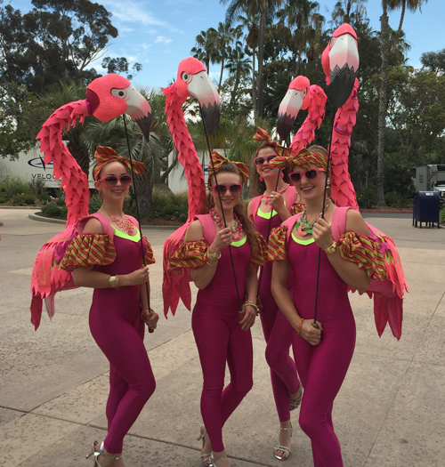 flamingo_girls_2016