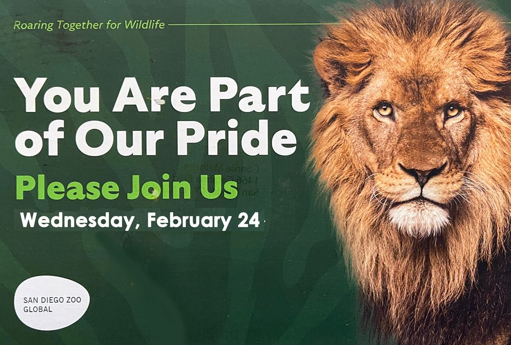 San Diego Zoo Global – Roaring Together for Wildlife